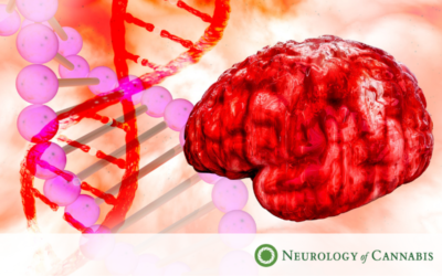 How Does Marijuana Benefit Patients With Brain Disorders?